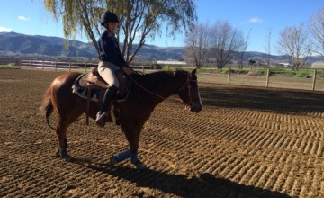 SL Barrel Horses–Our 1st Official Lesson at LoneStar Riding Academy