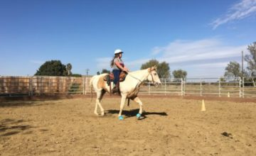 Horseback Riding Lessons with SL Barrel Horses at LoneStar Riding Academy